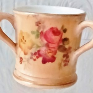 Royal Worcester Tyg and Cover